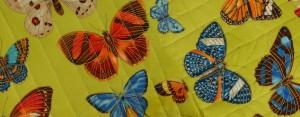 fond papillons